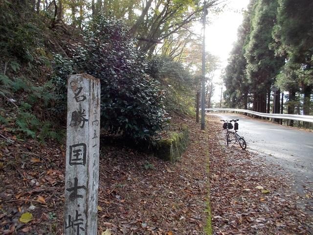 伊豆 癒しの道