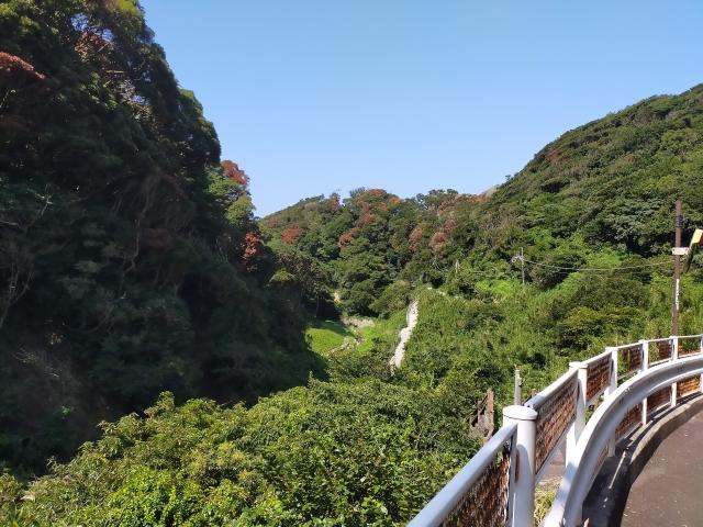 亜熱帯半島横断道