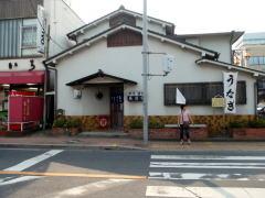 幸手宿から栗橋宿へ : 日光街道...