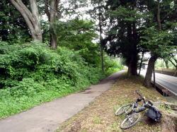 自転車で旧日光街道を旅しよう!