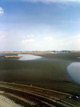 渡瀬貯水池の干し上げを見に行こう!
