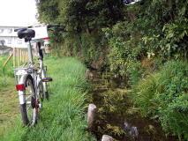 矢川・府中用水 湧水の旅