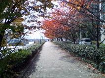 日本橋から月島へ都内散歩