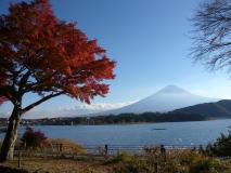 河口湖で紅葉と富士山満喫オフ
