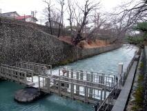 玉川上水サイクリング散歩♪