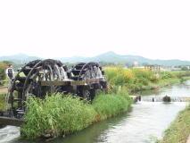 筑後川自転車道で久留米、太宰府へ