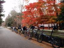 紅葉の軽井沢でバイクフライデーミーティング