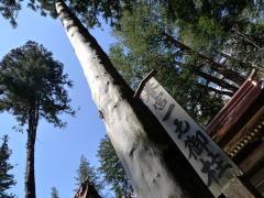諏訪湖周辺、御柱祭と史跡巡りサイクリング