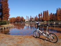 さいたま市の水路跡巡りポタリング