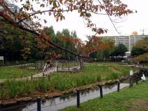 東京下町・運河跡の親水公園巡り