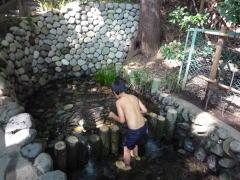 国分寺崖線&丸子川 湧水を巡る旅