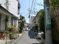 春の小川のモデル河骨川と渋谷川源流探訪